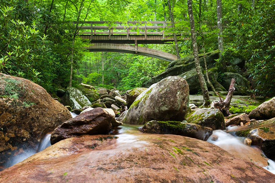 You can never get tired of the numerous rivers, streams, and walking trails located in Boone, Blowing Rock, and Banner Elk.
